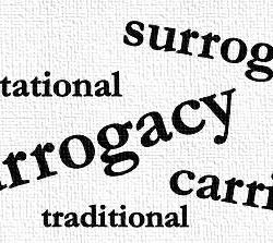 gestational and traditional surrogacy services