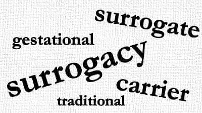 gestational and traditional surrogacy georgia
