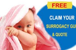 surrogacy services in Georgia