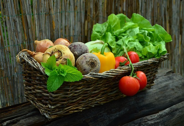 fertility and food: Tomato, spinach, carrot, onion mint, capsicum, and beetroot in Basket