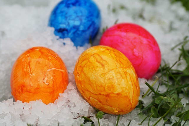 Egg freezing agency _ Easter egg pic in snow