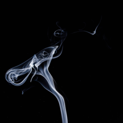 Pic: Cigarette smoke for men and female fertility affects smoking