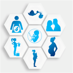Doğurganlık turizminin küreselleşmesi
